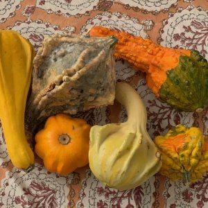 faux produce for fall table decor